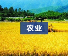贵州省农博园
